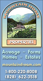Mountain Home Properties